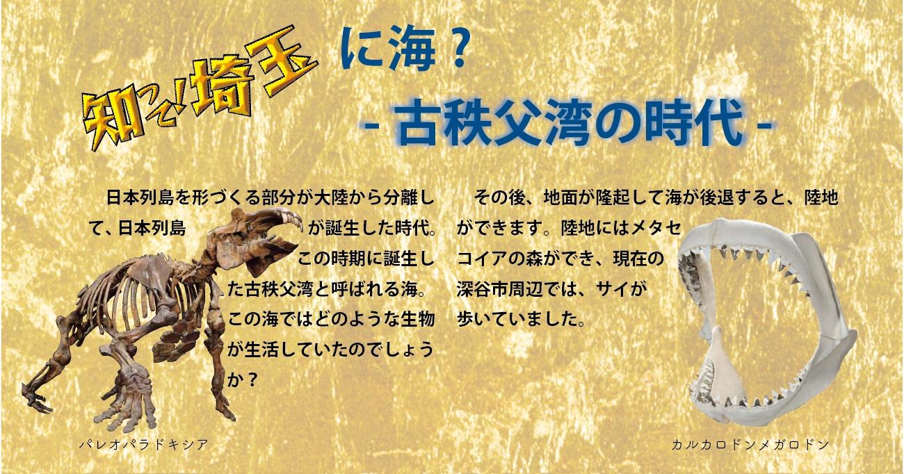 知って!埼玉に海?古秩父湾の時代。日本列島を形づくる部分が大陸から分離して、日本列島が誕生した時代。この時期に誕生した古秩父湾と呼ばれる海。この海ではどのような生物が生活していたのでしょうか?その後、地面が隆起して海が後退すると、陸地ができます。陸地にはメタセコイアの森ができ、現在の深谷市周辺では、サイが歩いていました。