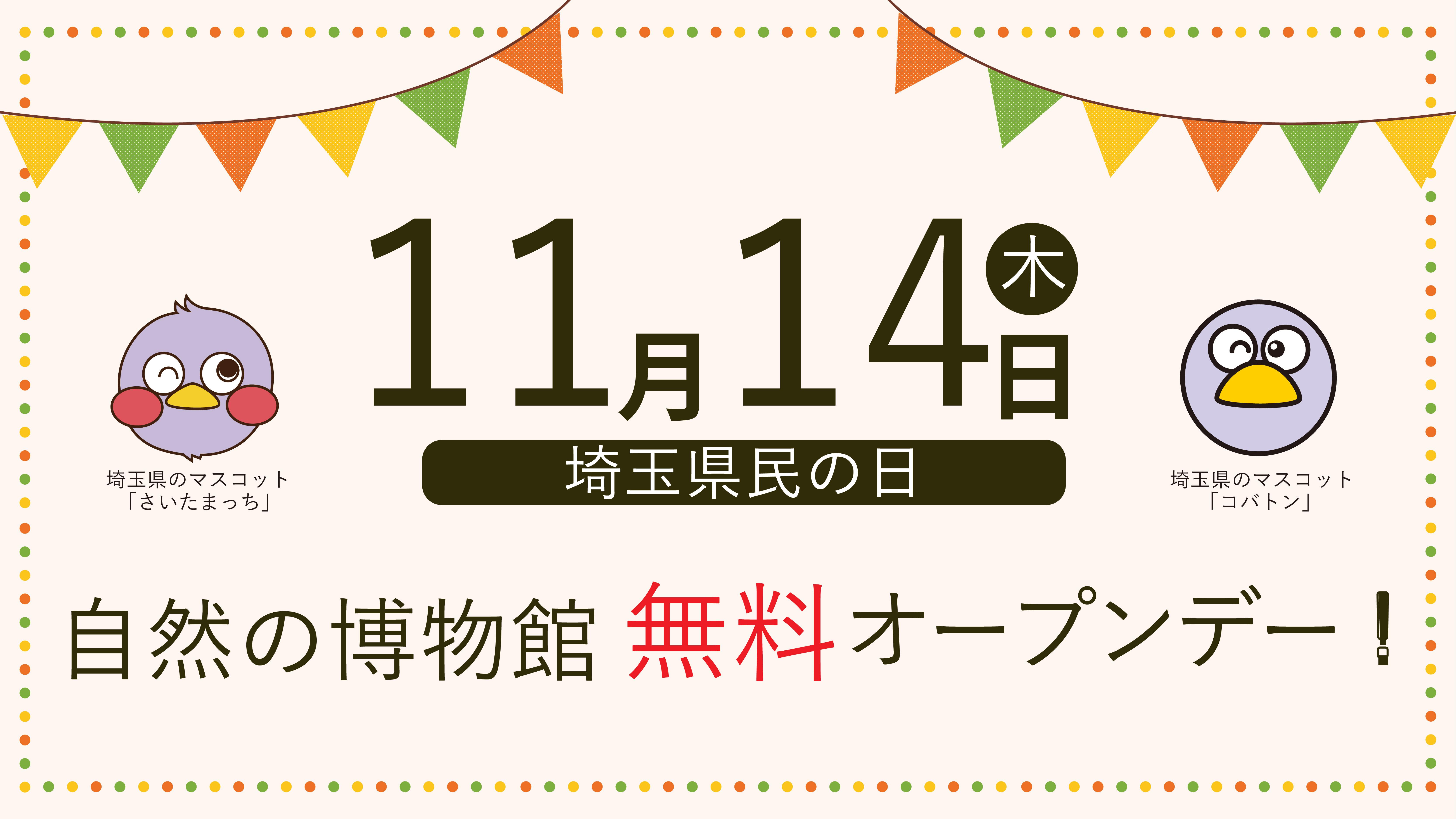 11月14日(木)県民の日 自然の博物館無料オープン