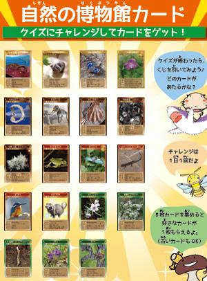 自然の博物館カード