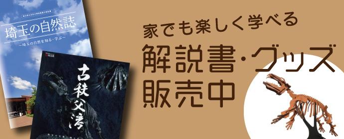 解説書・グッズ販売ページ