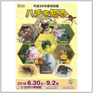 特別展「ハチを知る」チラシ