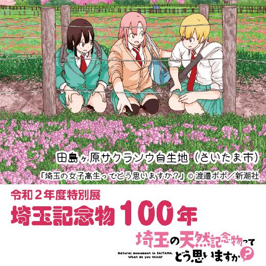埼玉記念物100年画像